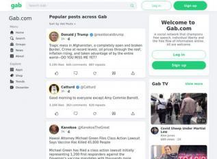 SEO rapport voor gab.com